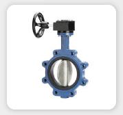 valve-india_07